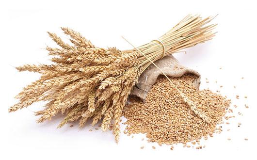 Dieta pe baza de cereale
